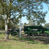 27 Nov 2014 - Selected Trees Begin to be Removed